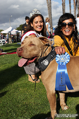Haute Dogs Pageants | Long Beach, Calif.